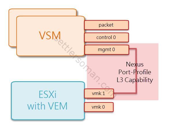 Cisco Nexus 1000v - L3 Capability Control
