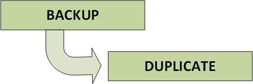 NetBackup Copilot - SLP 2