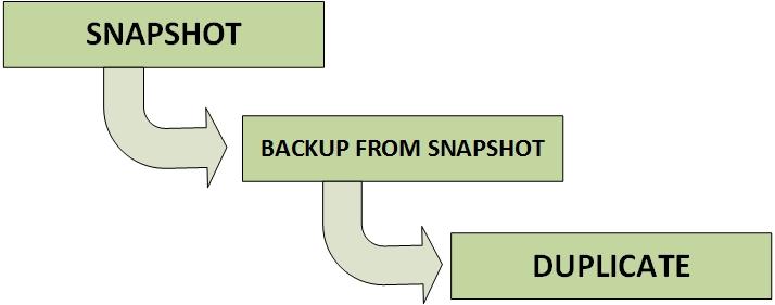 NetBackup Copilot - SLP